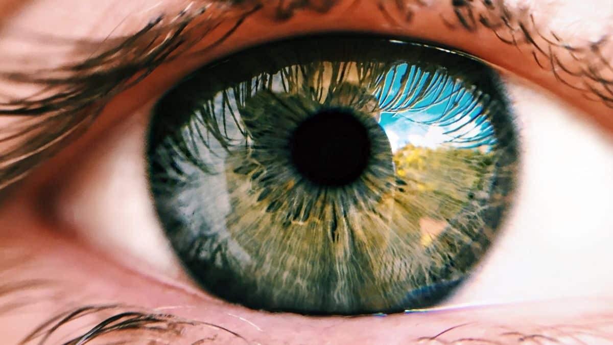 """Luz vermelha profunda """"recarrega baterias"""" das retinas e melhora visão (Imagem: Reprodução/ Olhar Digital)"""