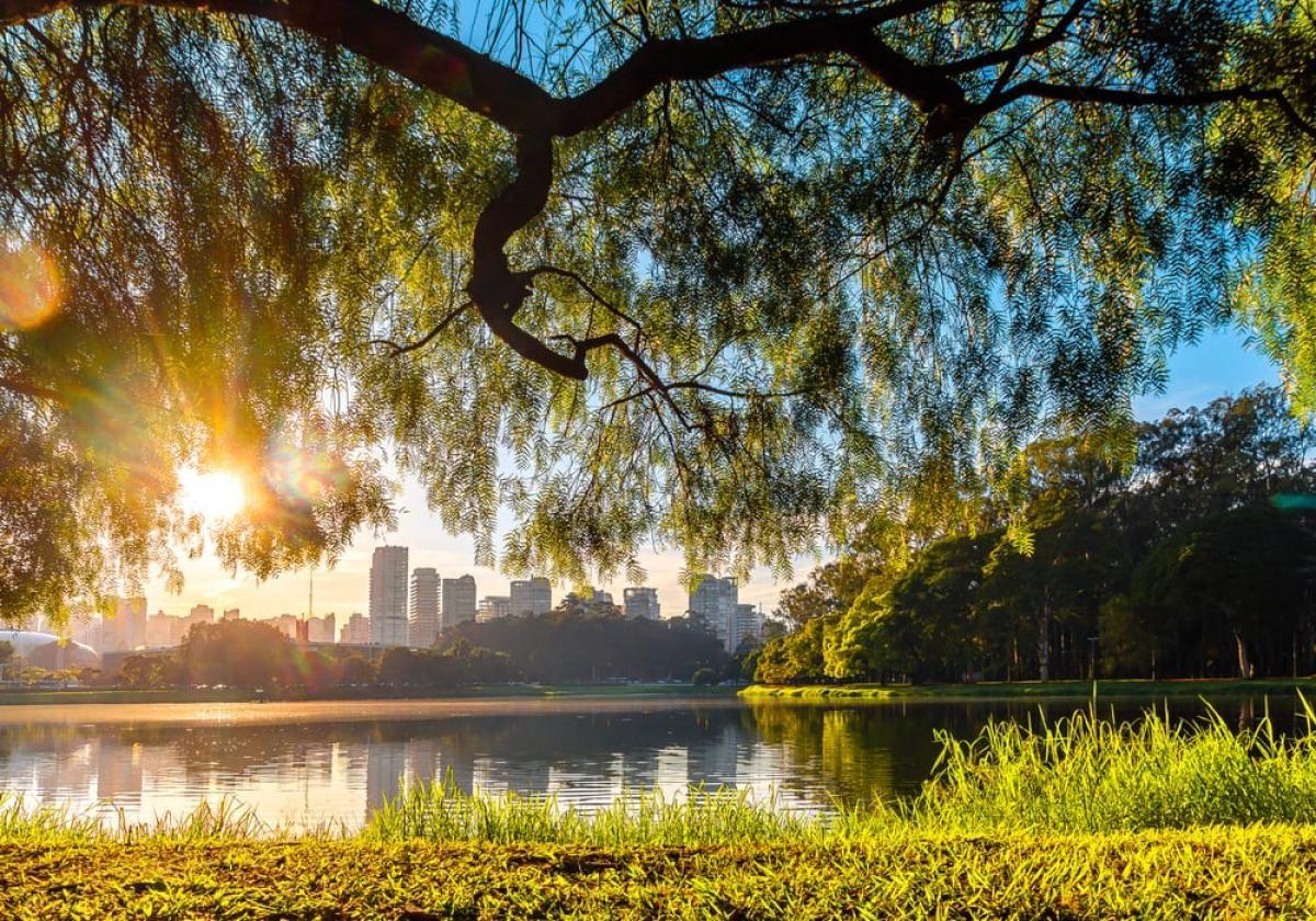 Quintal dos moradores de São Paulo, o Parque Ibirapuera é uma das principais áreas de lazer da cidade (Foto: Carla Passos)