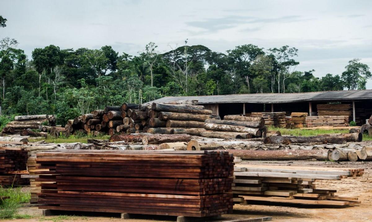 Classificação de madeira pode beneficiar consumidor, diz ministério (Foto: Marcelo Camargo/ Agência Brasil)