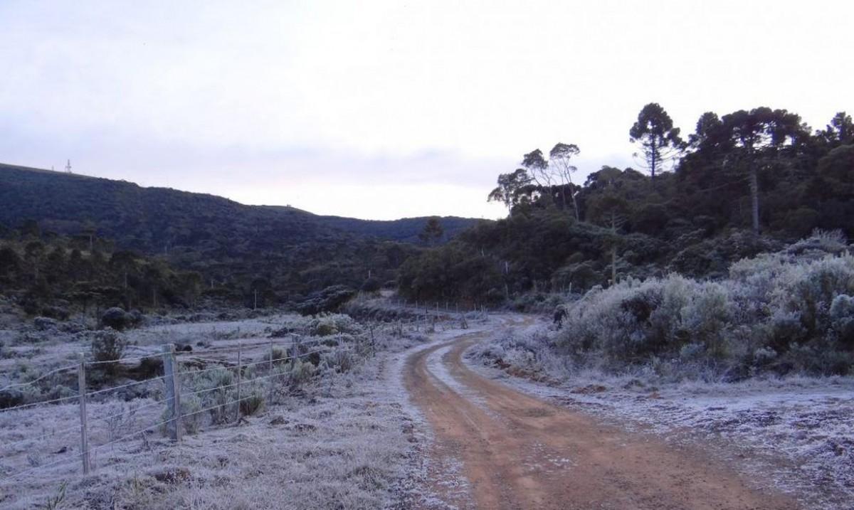 Massa de ar polar seca provoca neve e geada no Sul (Foto: Divulgação/ Defesa Civil de Santa Catarina)