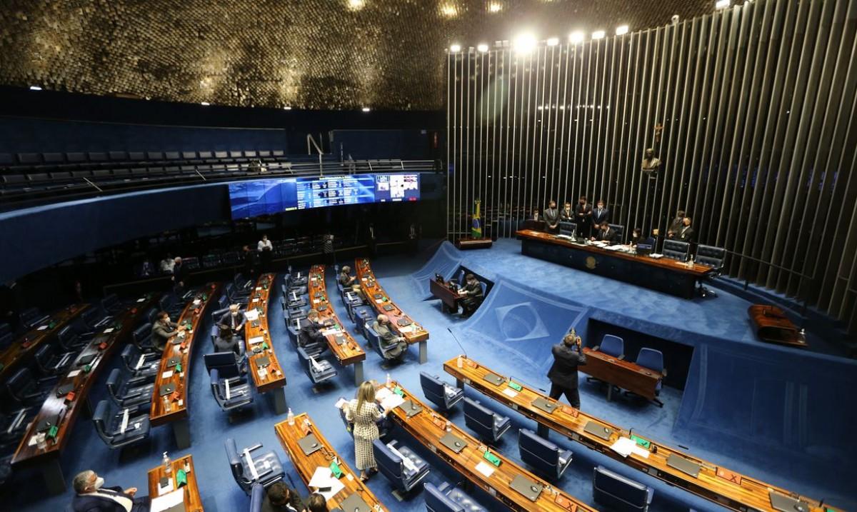 Senado aprova elegibilidade para políticos com contas irregulares (Foto: Fabio Rodrigues Pozzebom/ Agência Brasil)