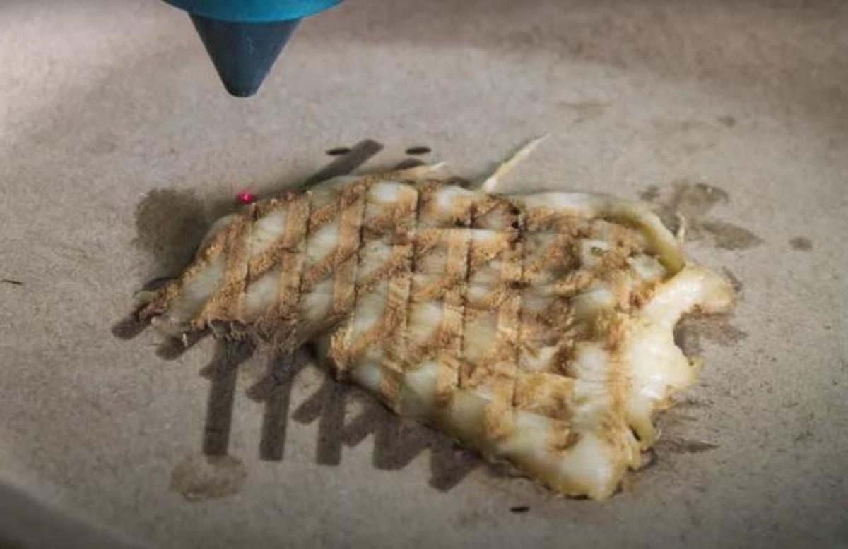 Frango grelhado impresso em 3D seria a comida do futuro? (Foto: Olhar Digital)